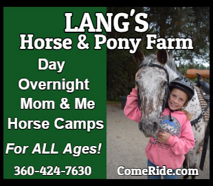 Langs Horse Pony Farm Camps 2018
